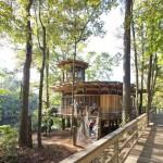 บ้านต้นไม้ริมทะเลสาบ ที่สุดของความร่มรื่น ท่ามกลางบรรยากาศธรรมชาติอันแสนสงบ