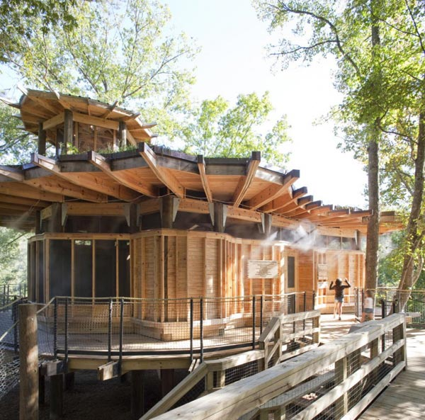 Timber Lakefront Treehouse (2)