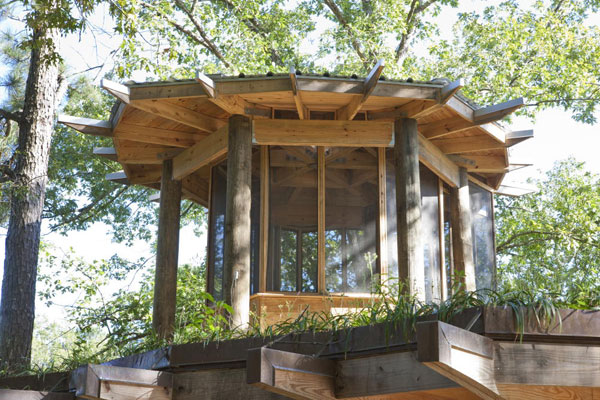 Timber Lakefront Treehouse (3)