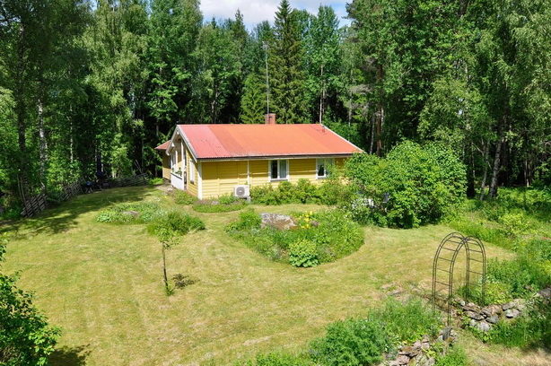 cute-yellow-cottage-houses-in-forest (2)