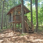 แบบบ้านไม้ทรงใต้ถุนขนาดกระทัดรัด ความสุขเล็กๆในผืนป่าอันยิ่งใหญ่