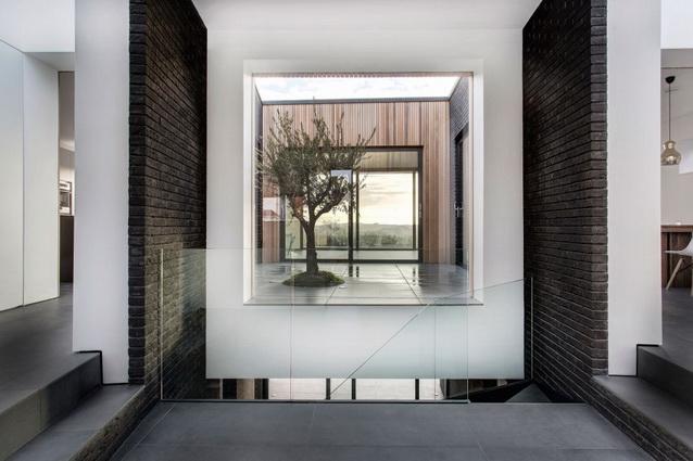 modern house under nature circumstance with zen garden (11)