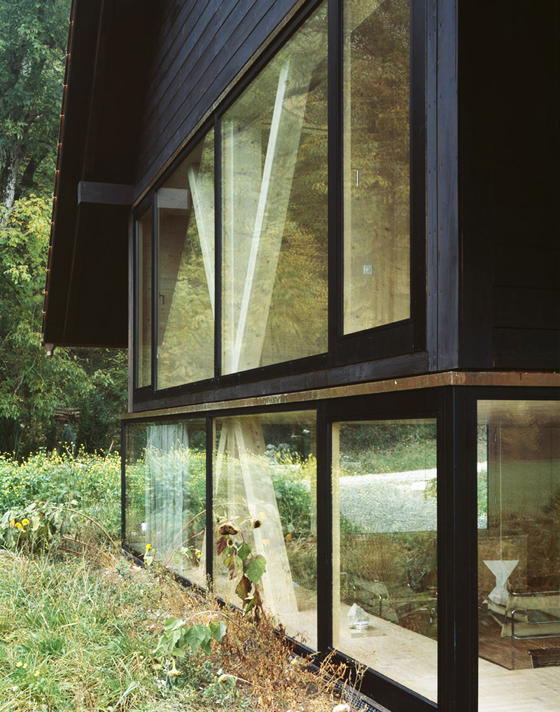 modern house with entire glassed wall in the forest (6)