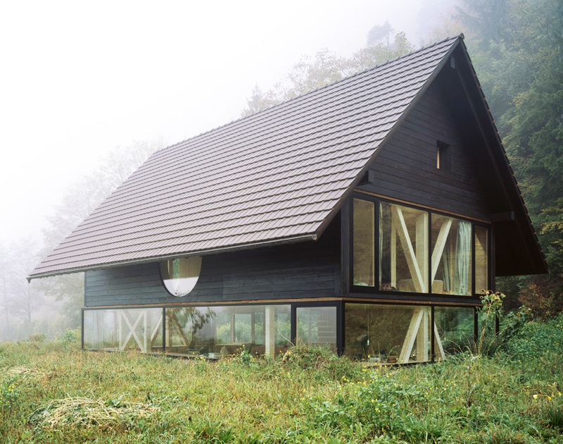 modern house with entire glassed wall in the forest (7)
