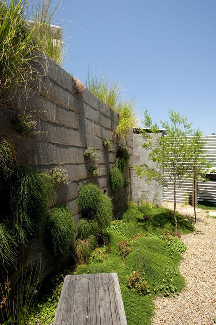 small modern loft house with zen garden (10)