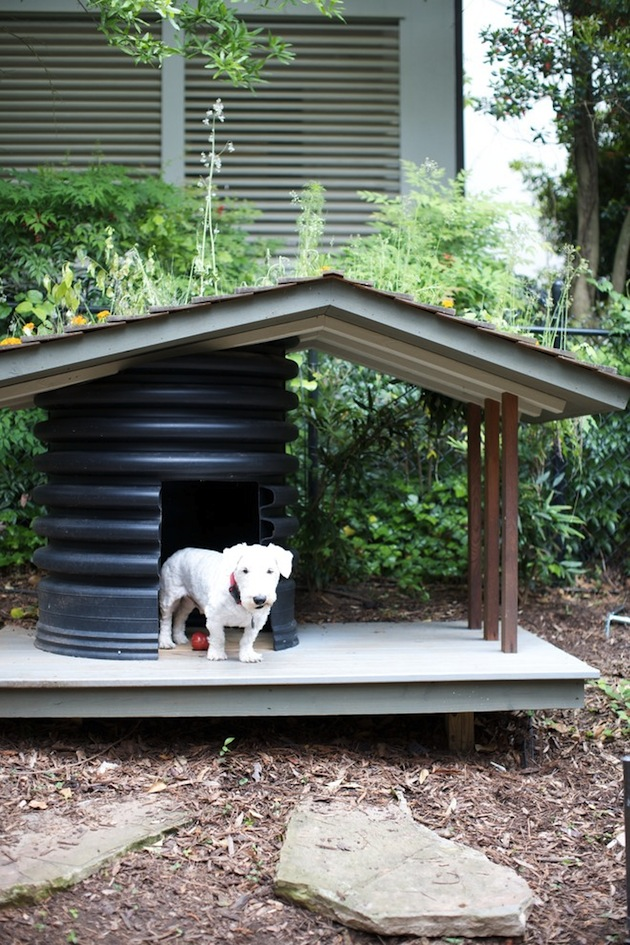 16-Dog-House-Designs-To-Keep-Your-Pooch-Cool-This-Summer-10