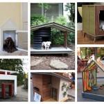 บ้านสุนัขสวยๆ 16 แบบ เพื่อสัตว์เลี้ยงแสนรัก แถมยังตกแต่งบ้านให้สวยงามด้วย
