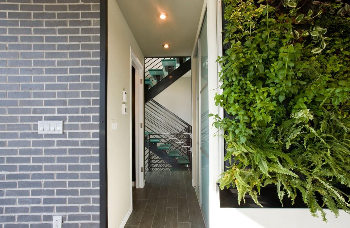 Green-Plants