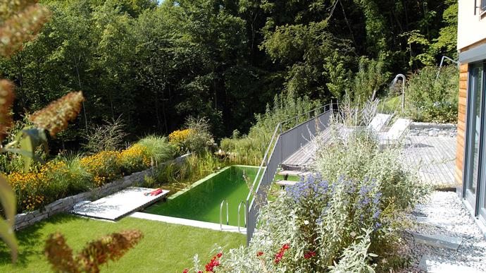 Natural-Swimming-Pools-DESIGNRULZ-004
