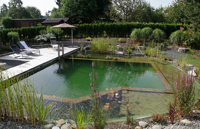 Natural-Swimming-Pools-DESIGNRULZ-013
