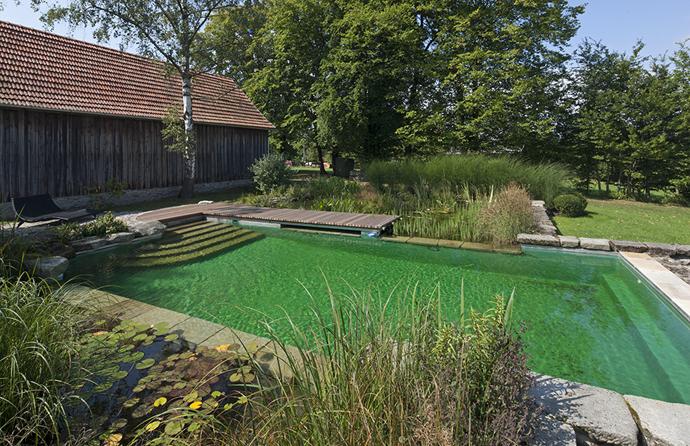 Natural-Swimming-Pools-DESIGNRULZ-025
