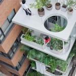 พาไปชมทาวน์เฮาส์ 4 ชั้นกลางกรุงโตเกียว กับไอเดียปลูกต้นไม้ทุกชั้นเน้นพื้นที่สีเขียว