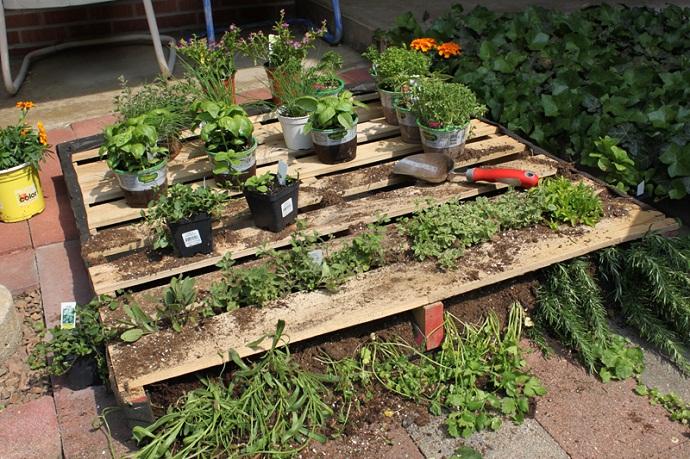 pallet-garden-designrulz-15