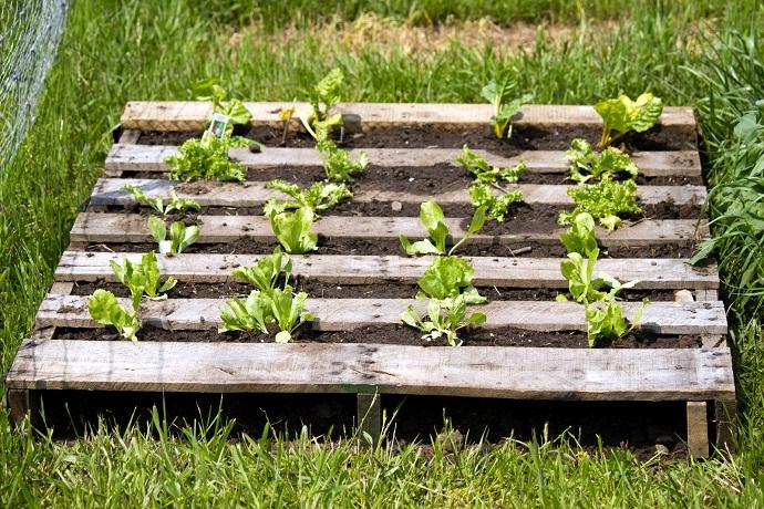 pallet-garden-designrulz-22