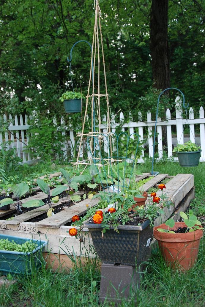 pallet-garden-designrulz-3