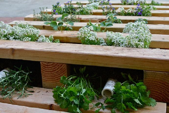 pallet-garden-designrulz-6