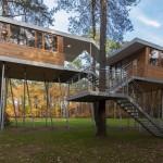 บ้านต้นไม้ใหญ่กลางป่าแนวโมเดิร์น มีใต้ถุนสูงจากพื้น ป้องกันน้ำท่วมได้เป็นอย่างดี