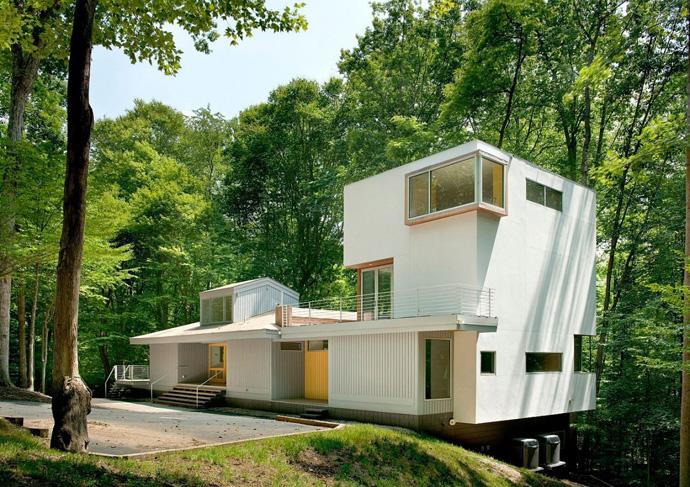 forest-designrulz-001
