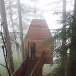 กระท่อมไม้ในป่าใหญ่ สำหรับเป็นบ้านตากอากาศ และจุดชมวิวธรรมชาติ