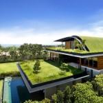 แบบบ้านแนวโมเดิร์นสองชั้น อนุรักษ์โลกด้วยหลังคาสีเขียวและสวนรอบบ้าน