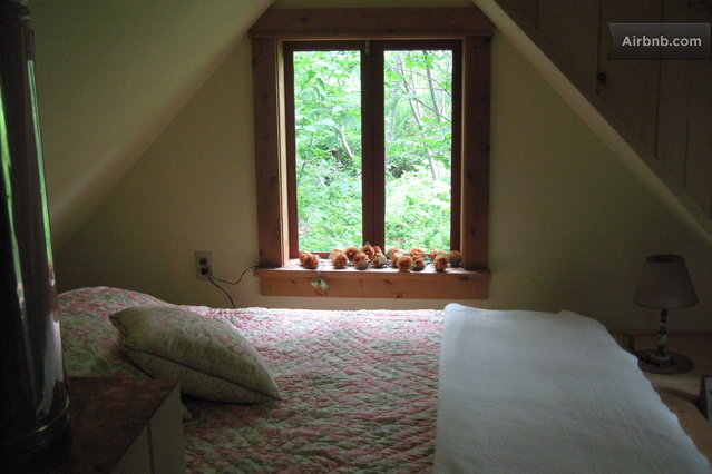 cabin cottage house (5)