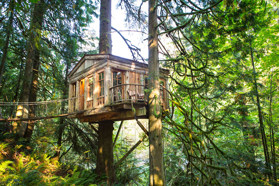 classic cottage wooden treehouse (4)