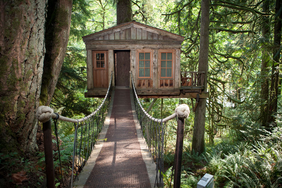 classic cottage wooden treehouse (6)