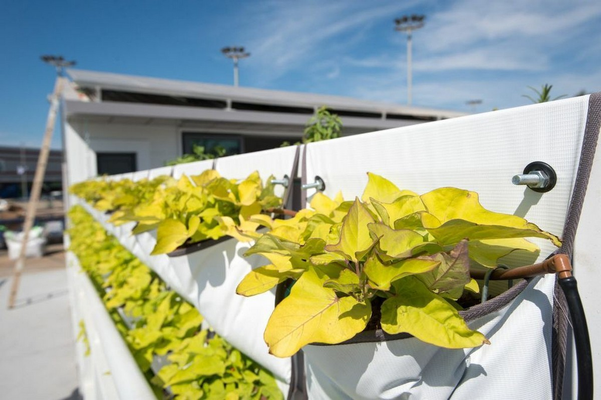 design-Solar-Decathlon