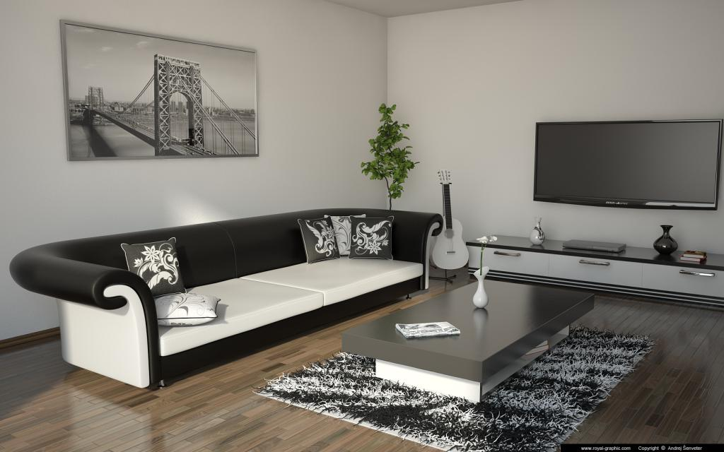living room black white (3)