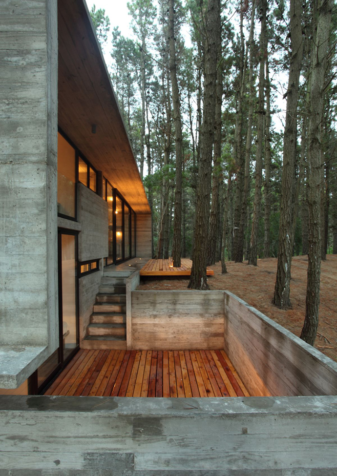 modern concrete house forest (1)