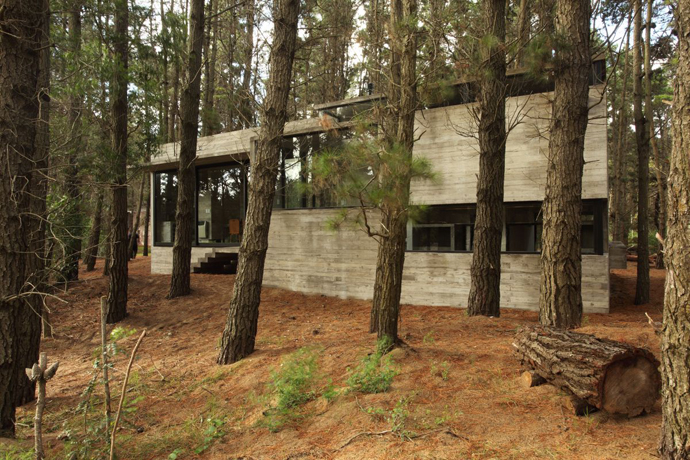 modern concrete house forest (10)