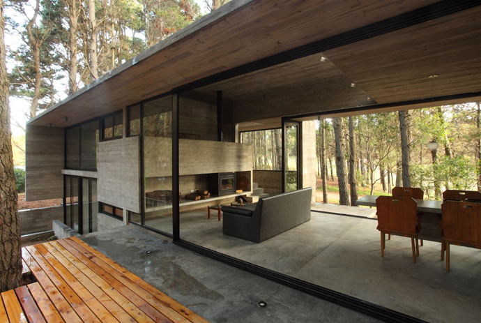 modern concrete house forest (11)