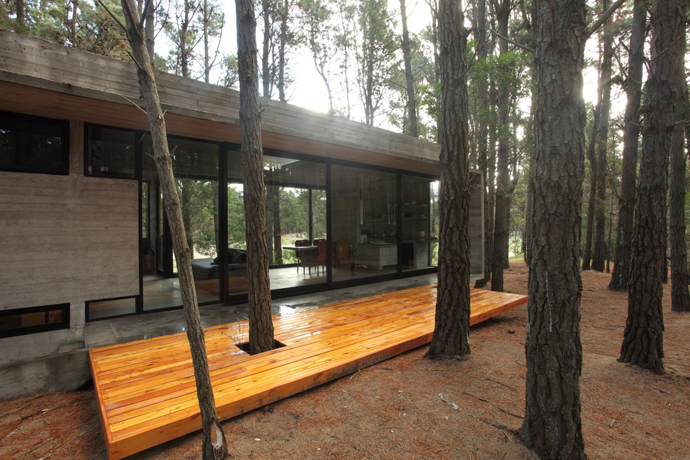 modern concrete house forest (12)