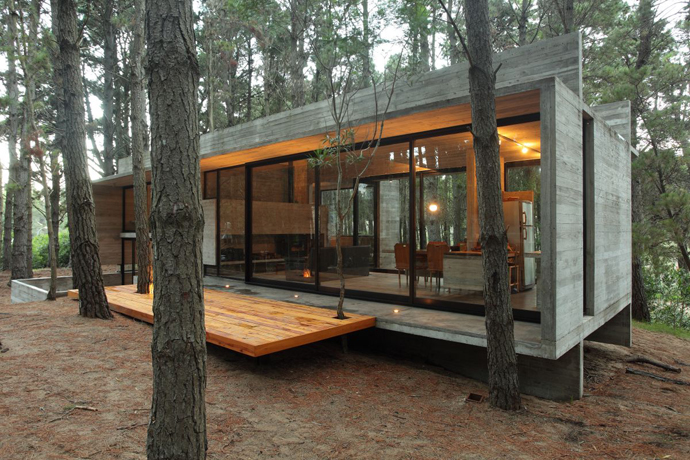 modern concrete house forest (14)