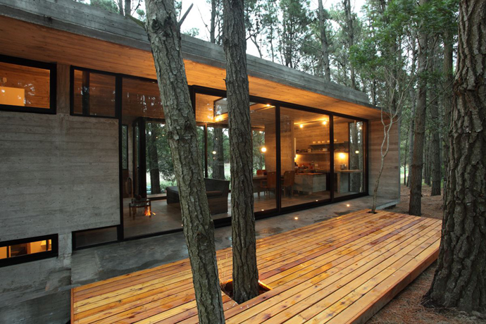 modern concrete house forest (15)