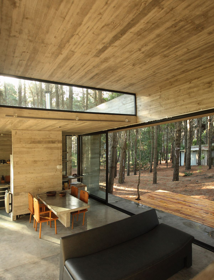 modern concrete house forest (18)