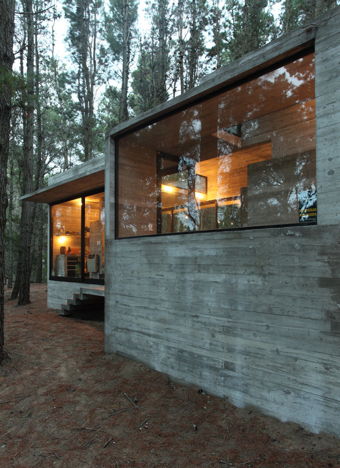 modern concrete house forest (19)