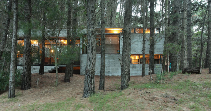 modern concrete house forest (3)