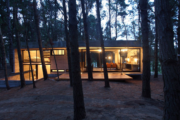 modern concrete house forest (5)
