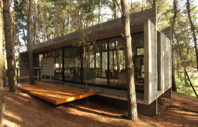 modern concrete house forest (9)