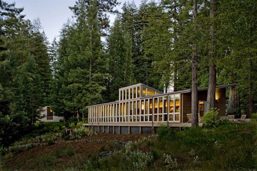 modern wood house forest (9)