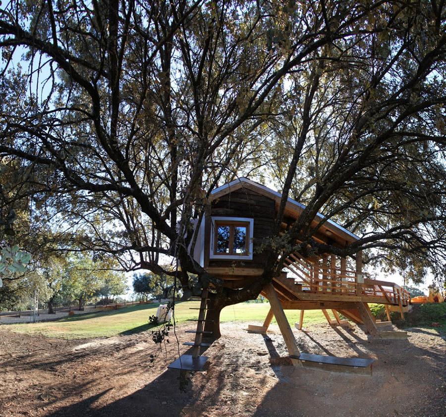 small tree house (2)