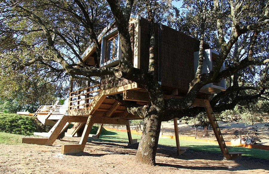 small tree house (5)