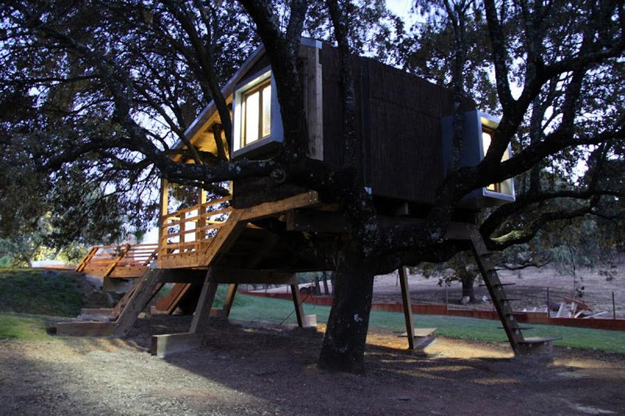 small tree house (6)