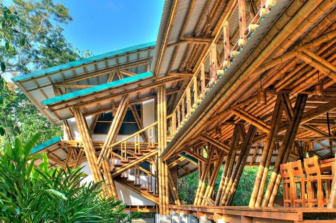 tropical resort bamboo nature (16)