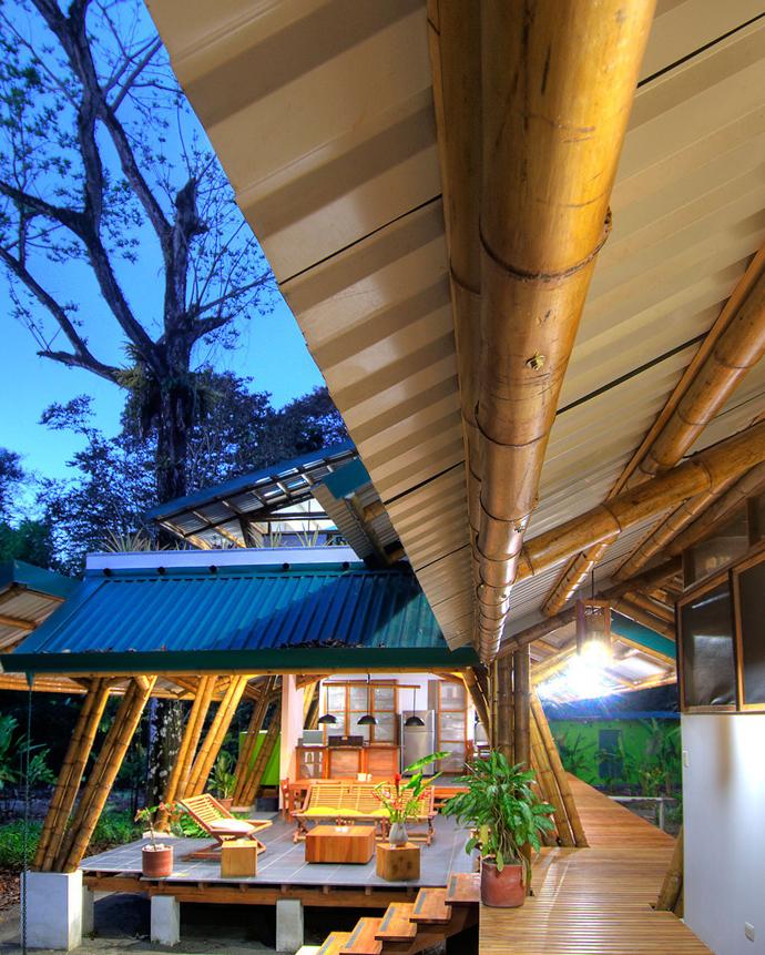 tropical resort bamboo nature (19)