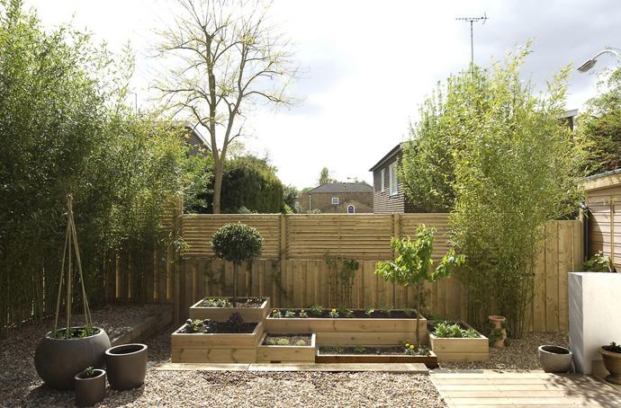 eco modern house (8)