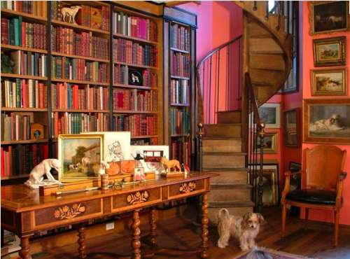 home library idea for you (1)