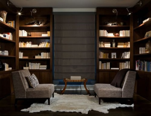 home library idea for you (11)