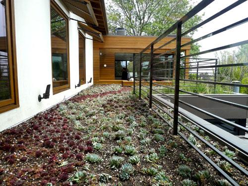 house design modern wood glass cool ideas (6)